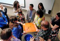 ICAEA-ERAU-Conference-2018-PHOTO-39-Workshop